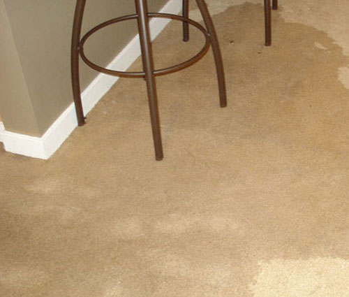 Sparkling Carpets Professional Carpet Cleaning Services